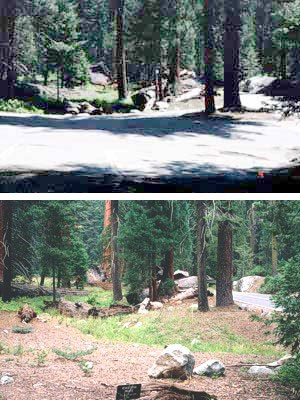 Above is a restored stream (2004) near the former Giant Forest Lodge area.