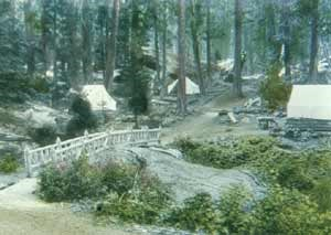 Tent cabins were common throughout the Giant Forest