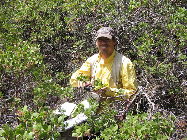 USGS biologist collects vegetation data, surrounded by manzanita shrubs.