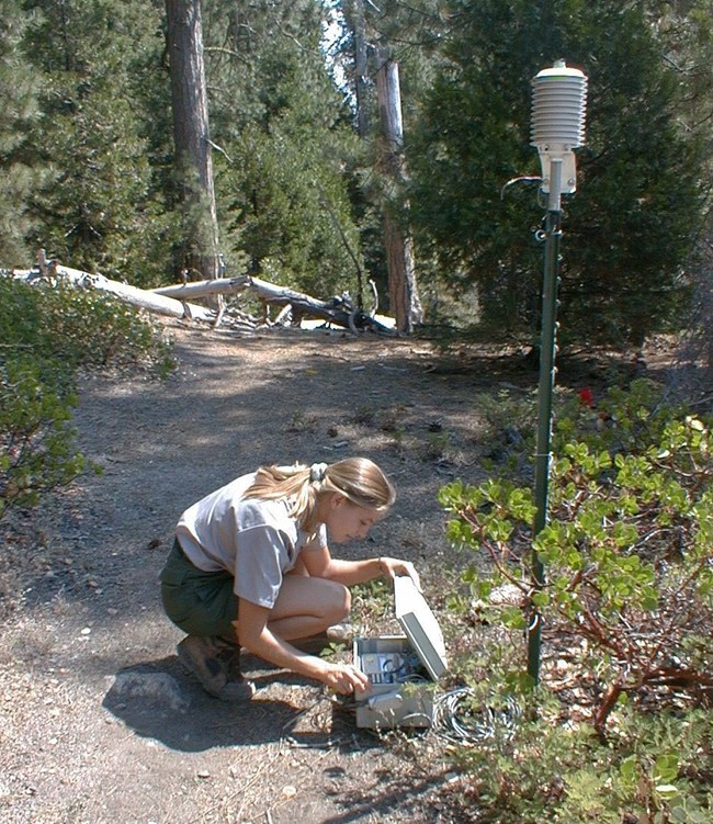 Air quality technician checks equipment at Sequoia National Park  monitoring site.
