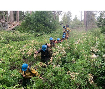 Firefighters hike with gear through brush