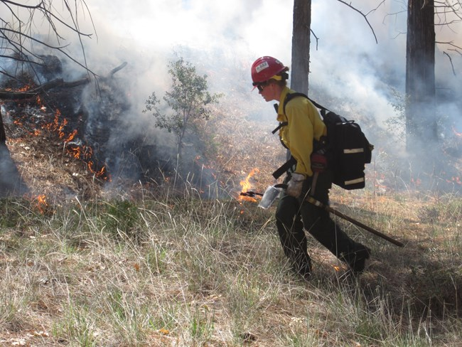 Woman carrying fire tool and wearing helmet and nomex fire clothes walks past burning vegetation.