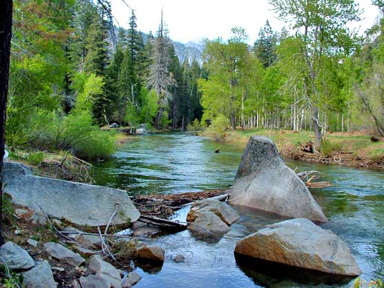 The South Fork of the Kings River flows peacefully through Paradise Valley