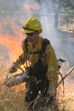 Ash Mountain Prescribed Fire