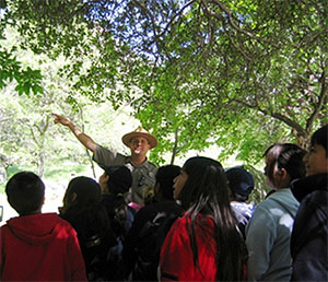 Ranger with students discussing phenology