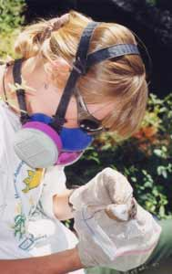 Wildlife technician wearing a respirator works with park animal