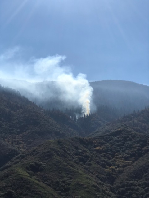 The five acre Eden Fire as seen from the Mineral King Road with white smoke.