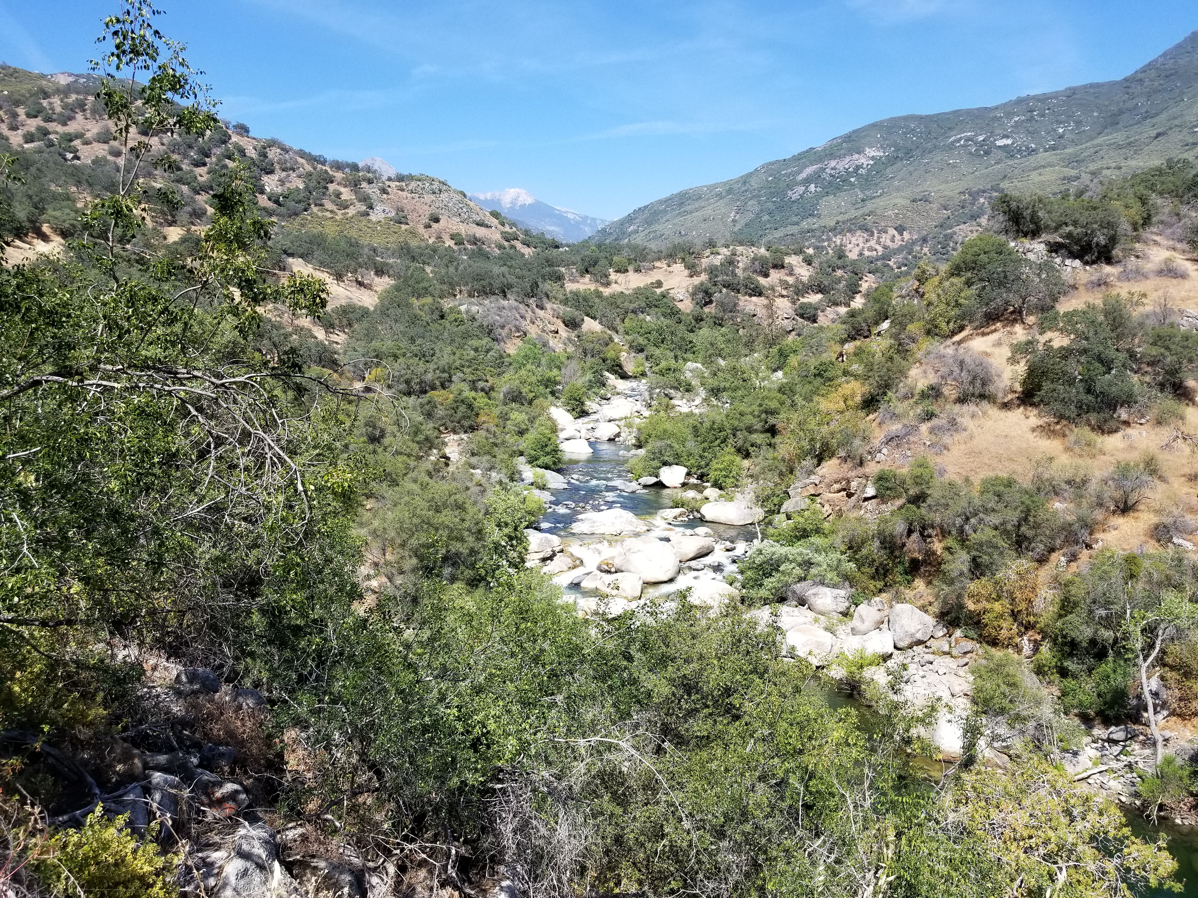The Kaweah River looking up stream from inside Sequoia National Park