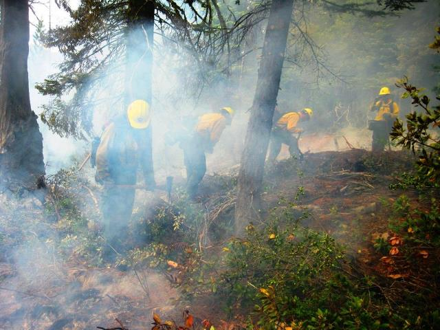 Crew from the Kaweah Wildland Fire Module work on the Garfield Fire. - NPS Photo