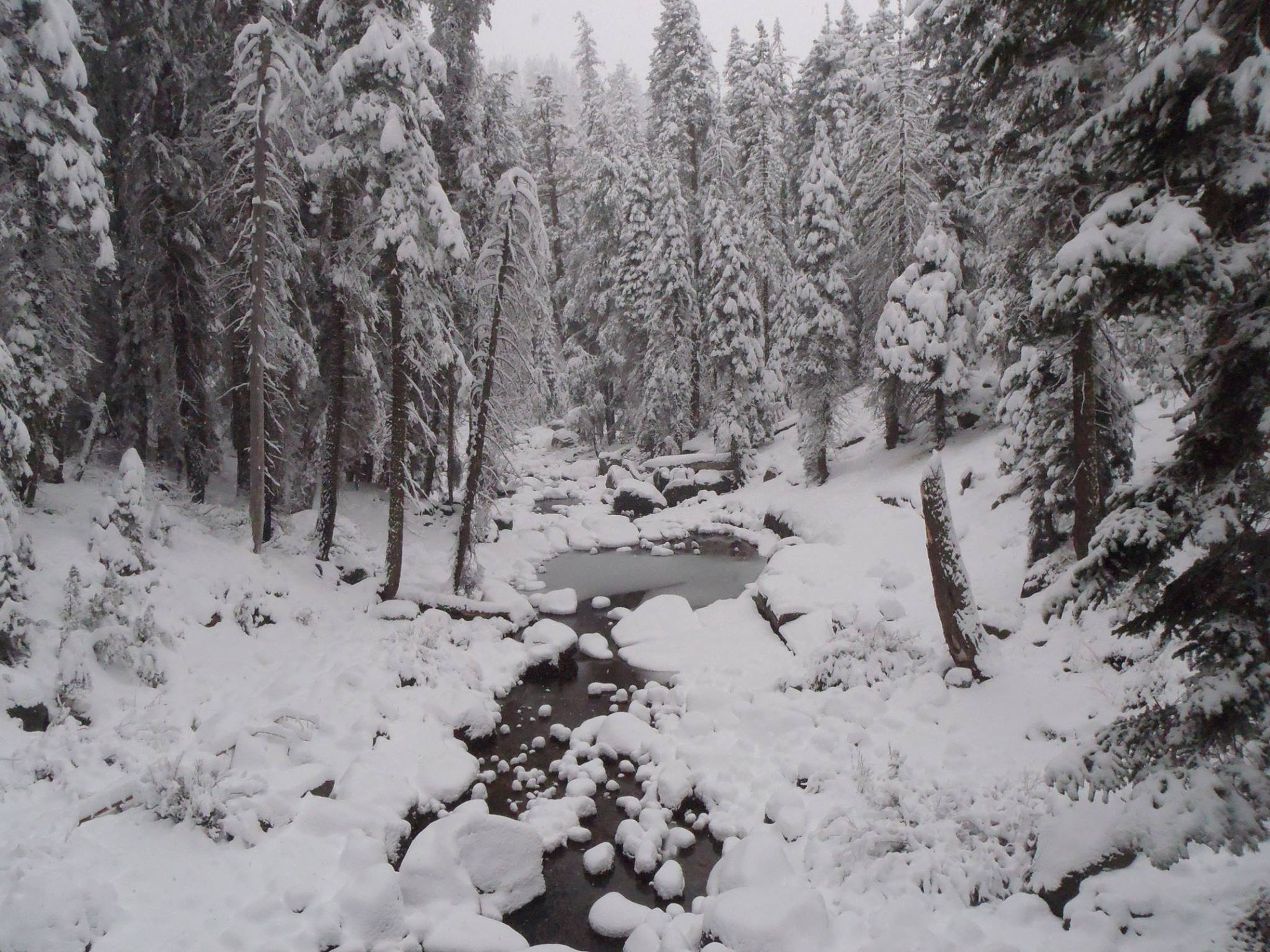 Snow at Marble Fork near Lodgepole, November 1, 2014