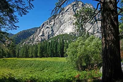A meadow below steep granite cliffs