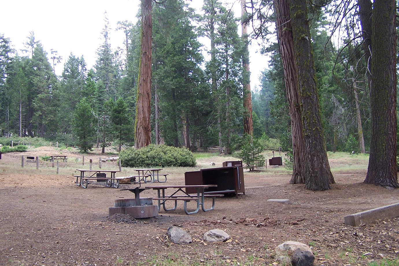 crystal springs campground - sequoia & kings canyon national parks