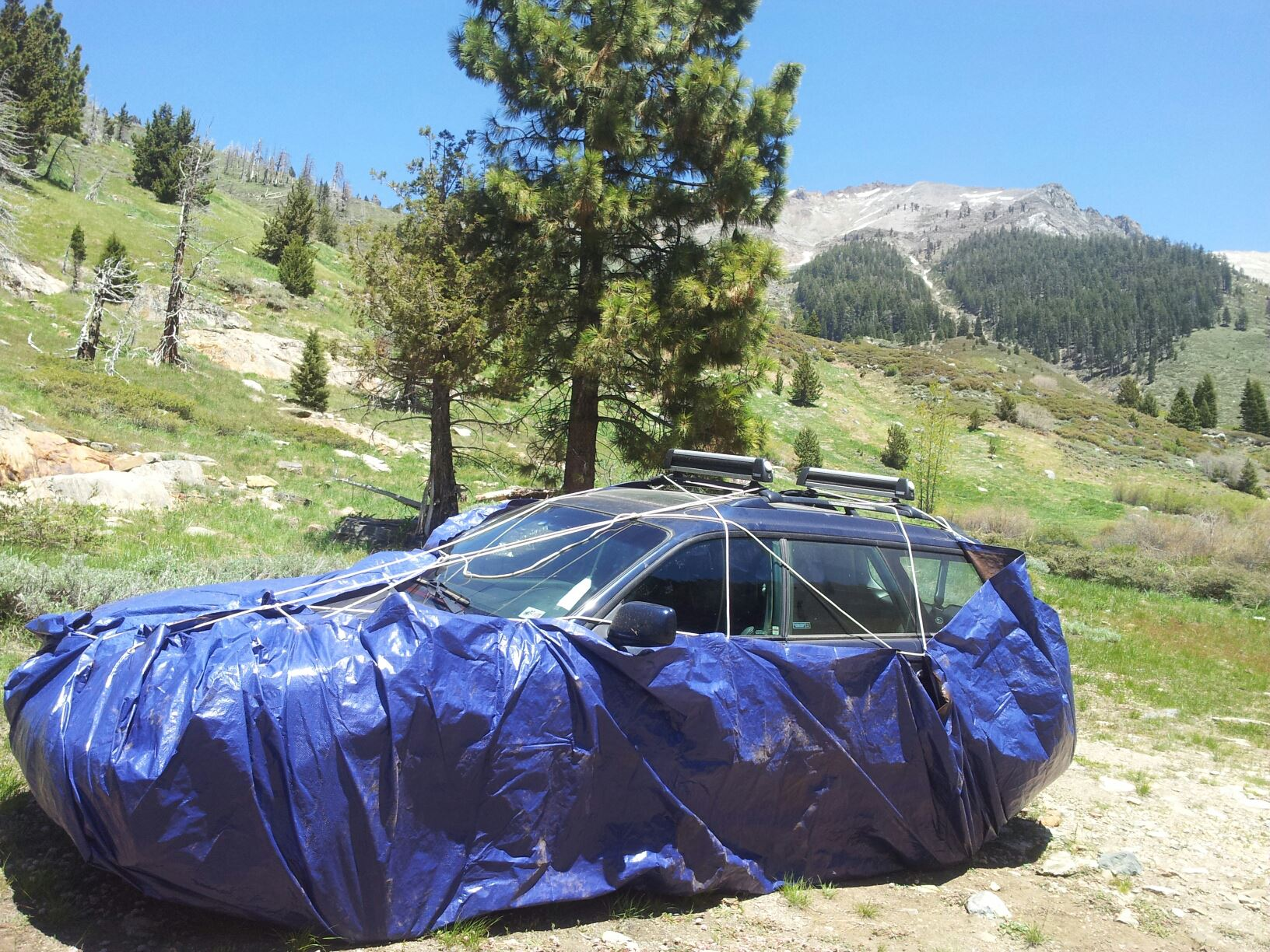 Car covered by tarp