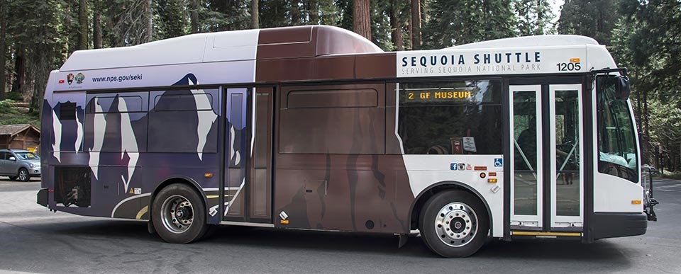 A large shuttle bus in Giant Forest