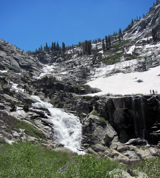 Snow melts into a waterfall running down a steep granite mountainside dotted with sparse trees. Green bushes grow in the foreground.