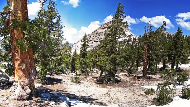 Wilderness Trail Descriptions - Sequoia & Kings Canyon National