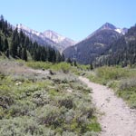 A trail runs through low vegetation to peaks surrounding Mineral King Valley.