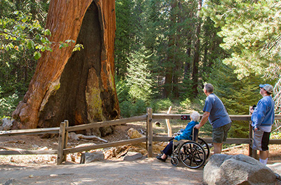 Accessibility Sequoia Amp Kings Canyon National Parks U S