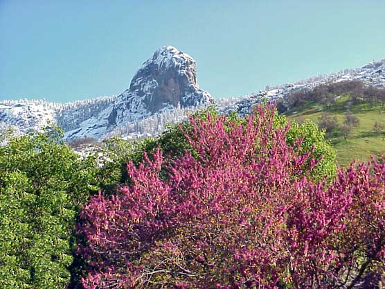 A spring storm dusts Moro Rock with snow