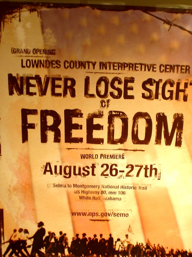 Never Lose Sight of Freedom
