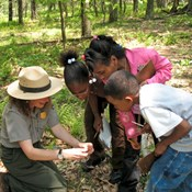 Students and a ranger take a close look at the forest floor.