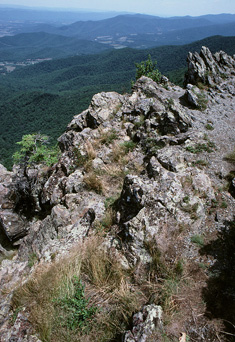 The rocky ledges of Little Stony Man Cliffs, with a gorgeous view of the Shenandoah Valley in the background.