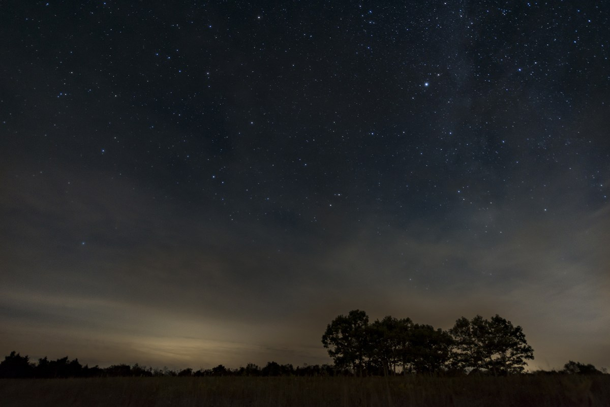An open field at night with sparse trees and stars in the distance.