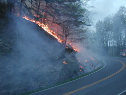Blackrock prescribed fire burns along Skyline Drive.