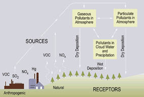 Schematic of acid deposition sources, transport, and receipt.