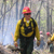 Firefighter in bright red helmet and yellow shirt walks along the fire line.