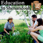 Education In Shenandoah