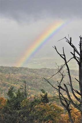 A classic rainbow adds a bright splash of color to the already vibrant fall vista.
