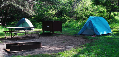 A campsite in Shenandoah's popular Big Meadows Campground.
