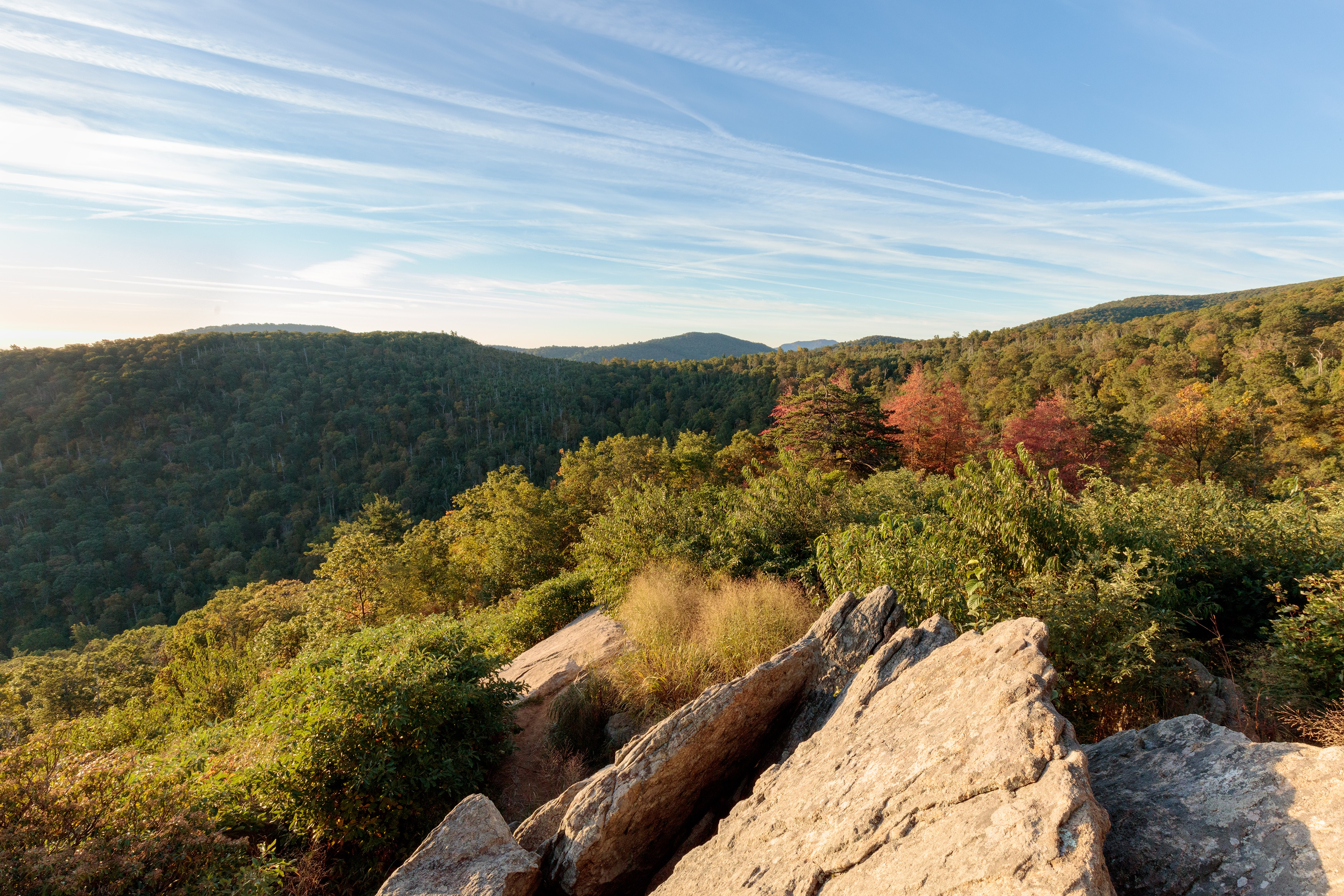 Autumn does her thing at Hazel Mountain Overlook, mile 33 on Skyline Drive