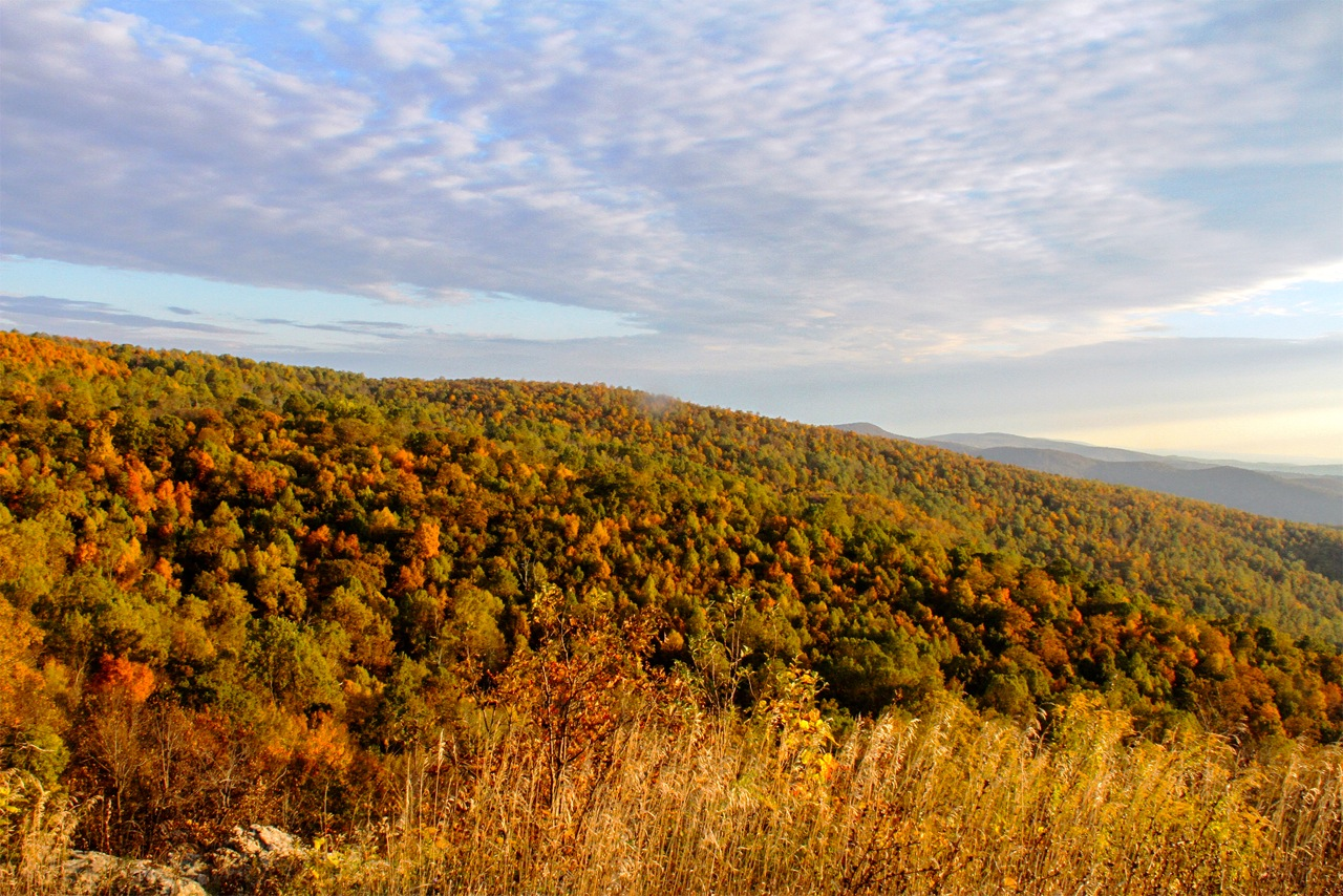 Orange and golds blanket the ridges of Shenandoah beneath a mulit-colored sky.