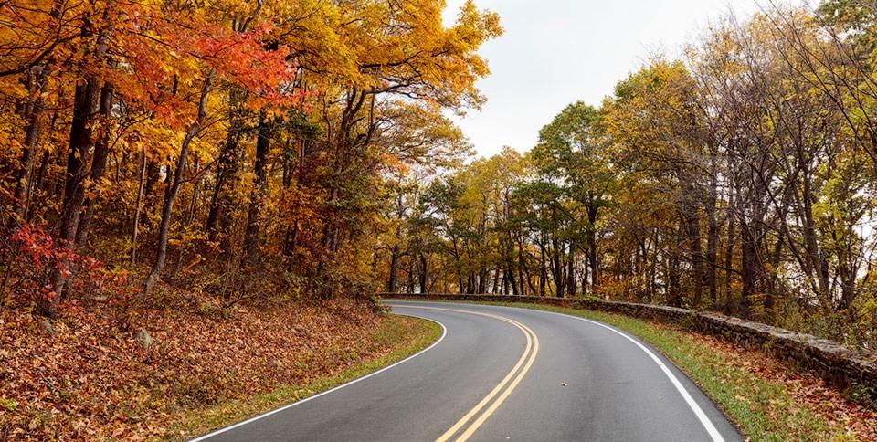 Driving Skyline Drive - Shenandoah National Park (U.S. National Park Service)