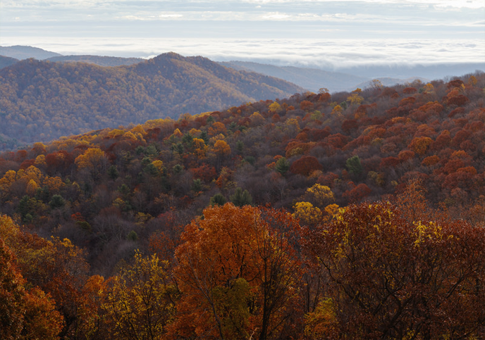 Thorton Hollow overlook in the fall