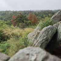 Rocks and trees at Hazel Mountain Overlook