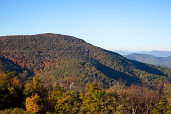 Long view of moutain peak of the leaves changing color.