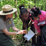 A ranger shows helps two visitors understand the ever-changing Shenandoah forest.