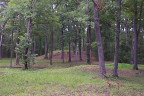 Shiloh Indian Mounds