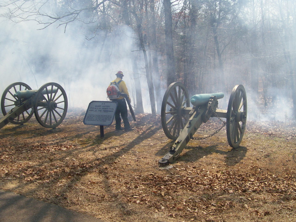 2014 burn at Shiloh