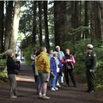 On a forest trail, a group of visitors gather to hear a Ranger speak.
