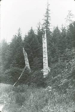 Black and white photograph of the Yeltatzie Pole along with another totem pole amid tall spruce and hemlock trees in Koiangles, circa 1903.