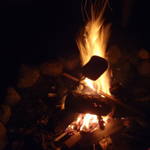marshmallow roasting in campfire