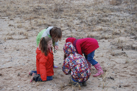 Curious youngsters explore a National Lakeshore beach in order to earn their Junior Ranger badges. Photo courtesy of the National Park Service.