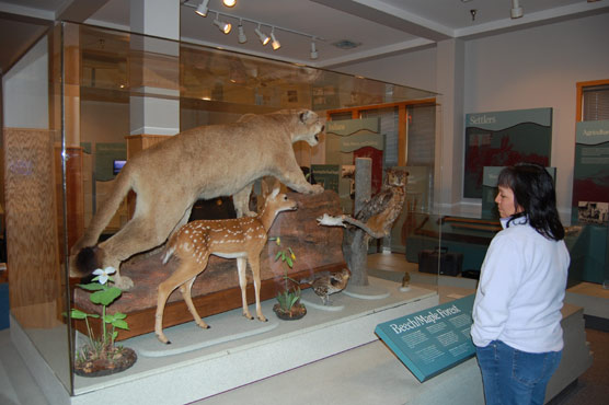 Sleeping Bear Dunes National Lakeshore visitor views new exhibit at the Empire Visitor Center.