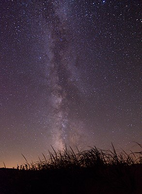 The Milky Way sillouettes dune grass.