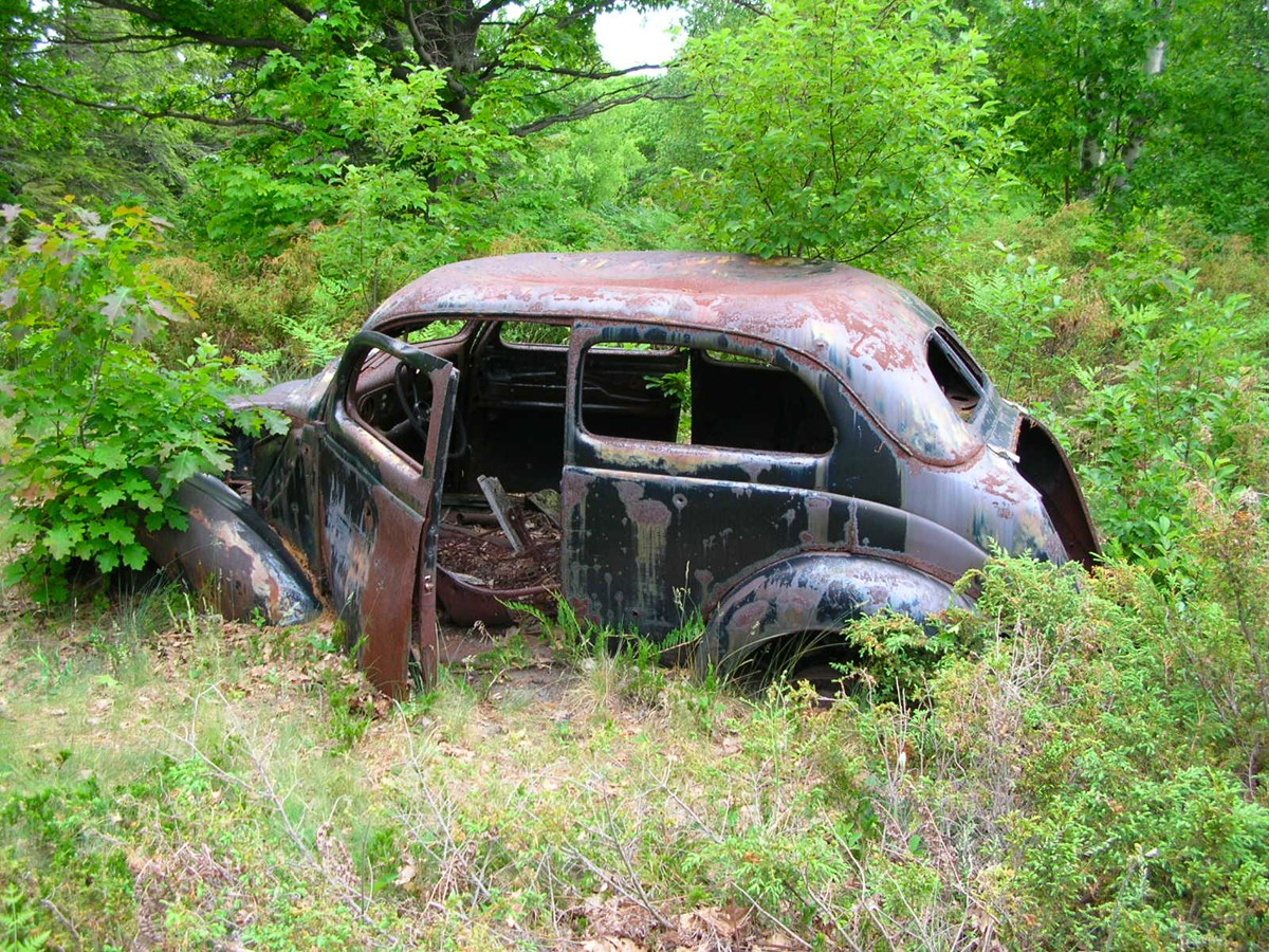 Rusted old car peeking from brush