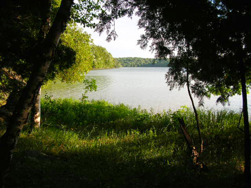 A peek of Manitou Lake through shoreline trees
